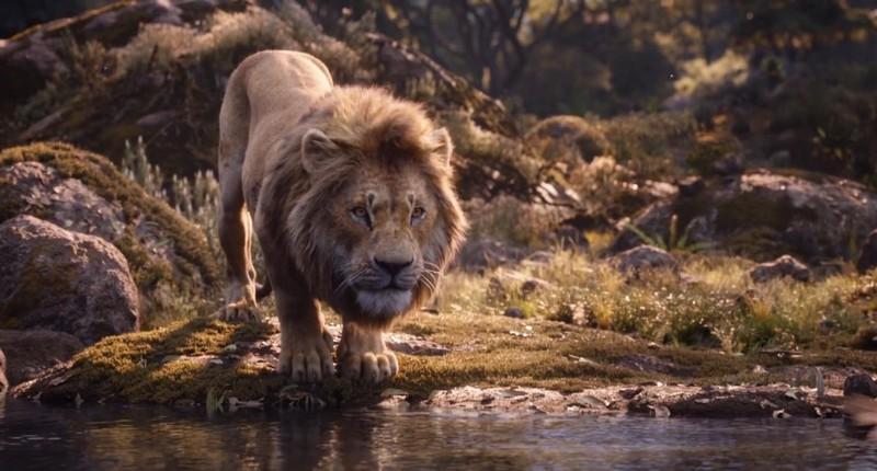 кадры фильма король лев 2019